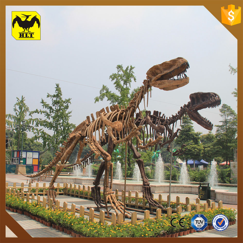 HLT fiberglass dinosaur skeleton for science musem equipment