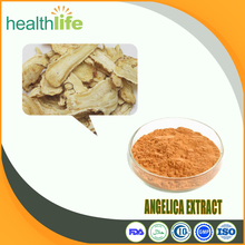 Natural Angelica Root Sinensis Extract, 1.0% Ligustilide Powder, Ferulic Acid