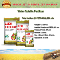 Luxi water soluble fertilizer 20-20-20+TE high quality NPK fertilizer