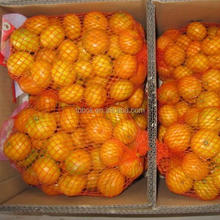 Fresh Oranges/fresh fruit /fresh oranges Citrus sweet mandarin orange