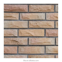 Dependable performance Gray, orange, pink, multicolor exterior Wall Tile