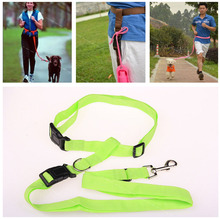 Adjustable Pet Dog Training neck Rope Strap