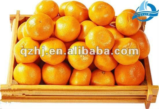 Yellow Citrus Fruit(Mandarin Orange)