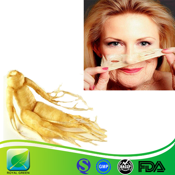 Factory Supply Ginseng Root P.E. Chinese Ginseng P.E.