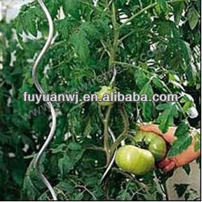 tomato spirals support tomato plant stands Q235( professional manufacturer )