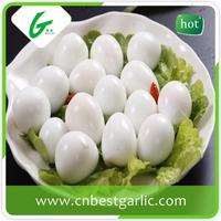 Import fresh quail eggs
