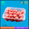 clam shell fruit packaging/ Cheap price 500g capacity clear plastic fruit packaging container