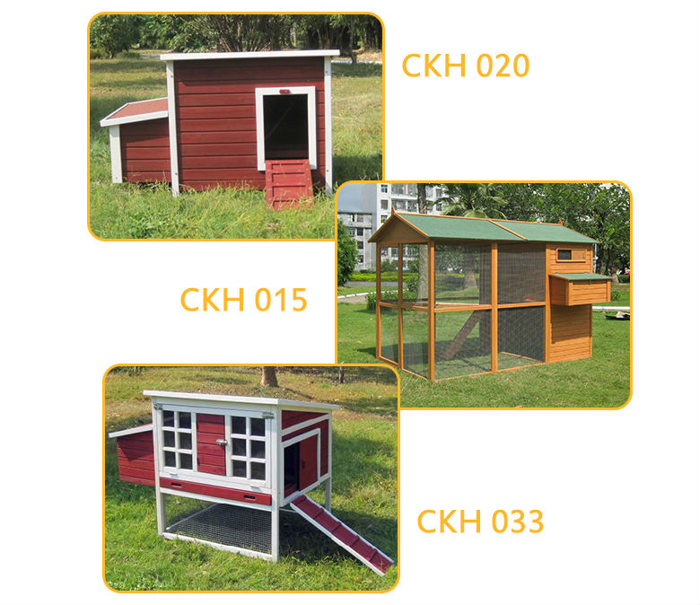 Red chicken house rectangle flat roof raising wooden chickens coop