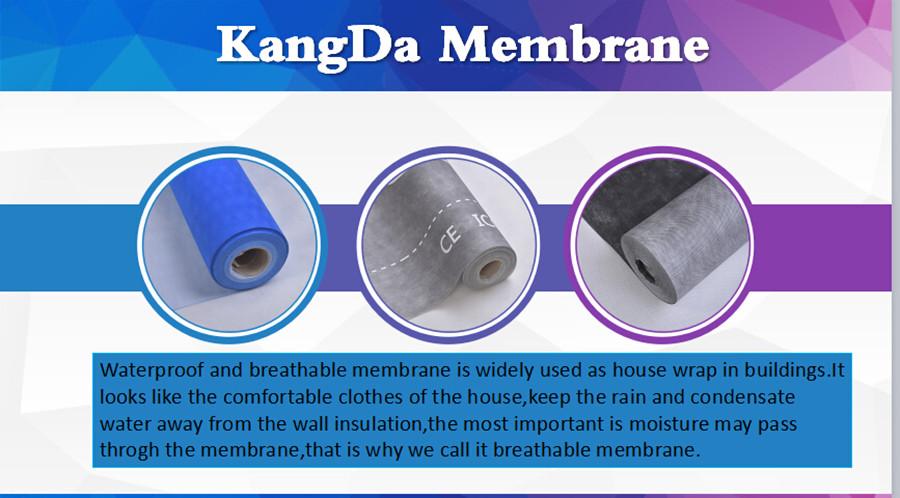 housewrap membrane (3).jpg