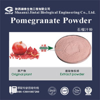 100% water soluble bulk pomegranate juice concentrate powder
