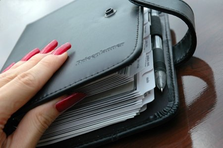 """Price Planner"" the deluxe Coupon Organizer (Wallet Binder Holder)"