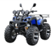 electric ATV 250 CC 4 x 4