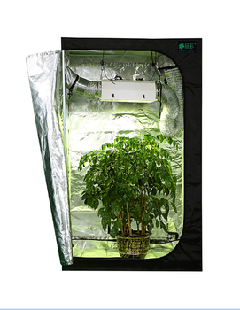 Guaranteed Quality Reasonable Price Aluminum Greenhouse Tunnel Plastic Greenhouse Film Agriculture with Greenhouse Light