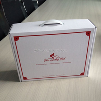 Save Shipping Cost Your Own Brand Name Printed with Plastic Handle White Custom Corrugated Box