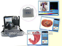 2013 professional 3D NLS quantum magnetic body analyzer with different language 3d nls health analyzer