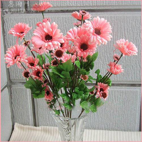 Garden flower pink sunflower seeds for growing
