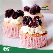 China manufacturer marshmallow food grade pectin powder