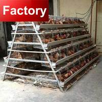 A type frame battery cages for laying hens in poultry farm