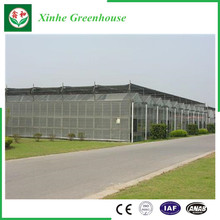 Garden/Farm/Tunnel Multi-Span PC Sheet Green Houses for Rose/Potato