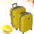 2017 New Fashion PP Plastic Suitcase