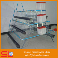 China chicken poultry breeding houses chicken breeding equipment