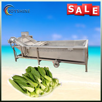 Free shipping industrial bubble vegetable washing machine