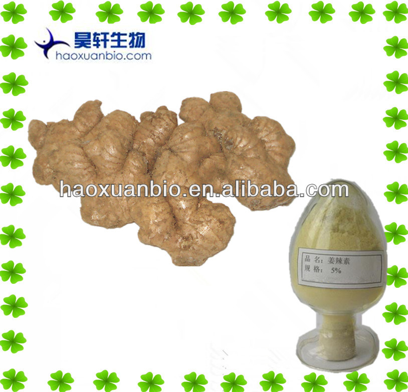 water soluble/Ginger extract powder/Gingerol 5% 6% HPLC