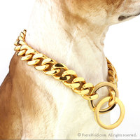 Gold Stainless Steel Thick Cuban Link Chain Dog Collar