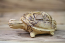 Olive Wood Carved Turtle