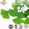 Factory Supply Natural Ginkgo Leaf Extract Powder Flavone Lactones