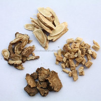 dang gui dry root high quality piles medicine