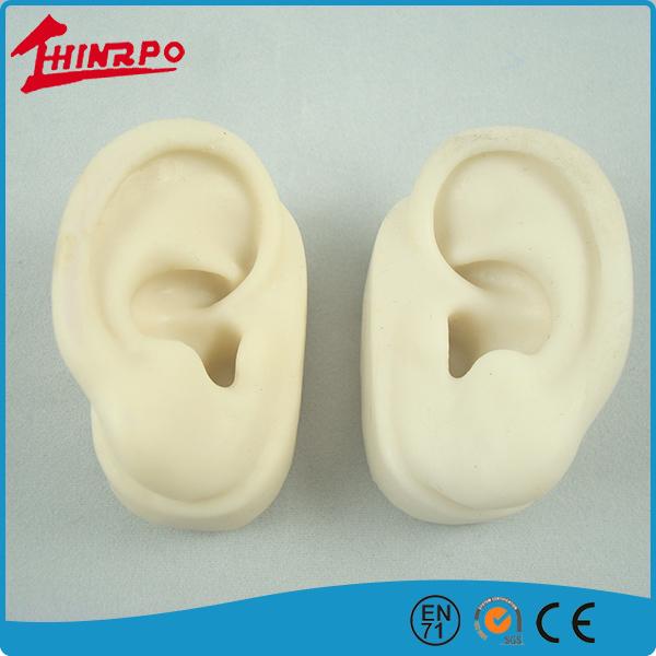 Otoplastic Silicon Human Ear Model For Shop Window Display