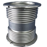 bellows expansion joints/metallic compensator