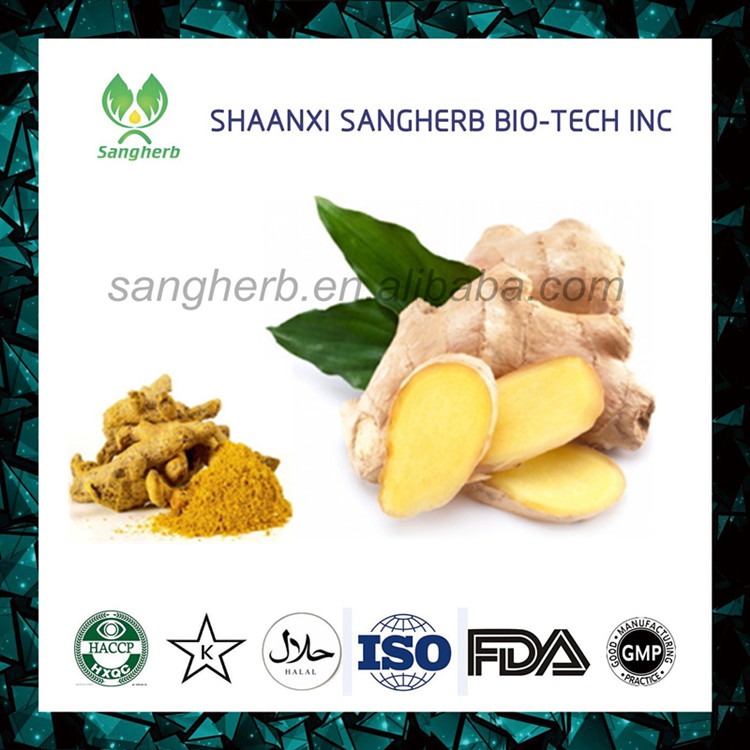 Natural pure ginger powder extract