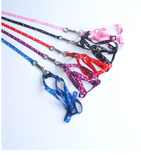 Reinforcement headed dog leash dogs simultaneously pull a rope tow two pet dog chain leashes