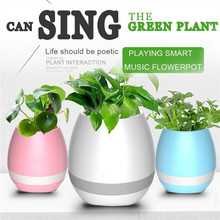 2017 Selling the best quality cost-effective products lotus flower pot