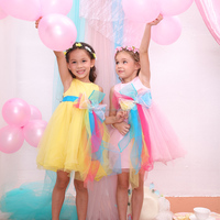 China Supplier Elegant Puffy Prom Dress,Girls Party Dresses From Shamila Brand