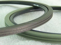 china supplier PTFE Glyd excavator rotary rod seal