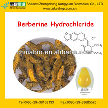 Coptis Chinensis Extract/Berberine Hydrochloride