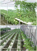 garden tunnel greenhouse for sale