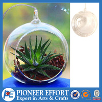 Round glass vase globe hanging glass terrarium air plant holder
