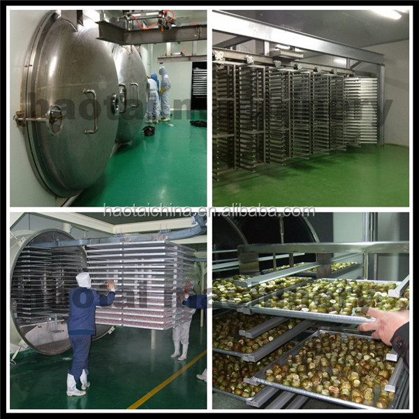 JS Purify refrigerated compressed freeze drying equipment