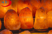 Manufactory Wholesale Himalayan Salt Lamp swith Lower Price in China