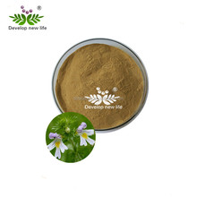 High quality eyebright Extract/Eyebright Extract powder/Euphrasia officinalis L