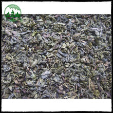 Hot selling 2015 tea weight lose green tea