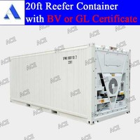 Brand new van refrigerated container