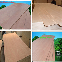 4.5mm Plywood, Bintangor/Okoume/Red Meranti Polywood For Furniture