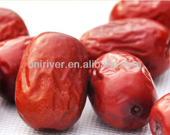 Chinese Red Dates Extract,red dates powder