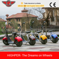Cool 800W Brushless Adult Electric Motorbike, Electric Harley, Electric Chopper