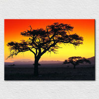 Wholesale canvas printed painting , trees in a Sunset scenery of Africa from a Picturesque photo , home decor art free shipping